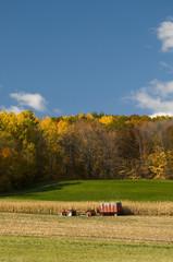 Harvest in Autumn