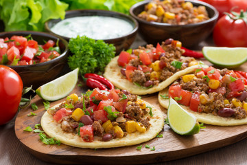 Mexican cuisine - tortillas with chili con carne, tomato salsa