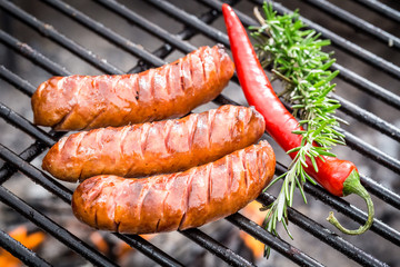 Hot sausage on the grill with chilli and rosemary