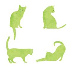 catsstory