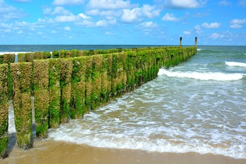 Wall Mural - breakwaters on the beach, northsea in Domburg Holland