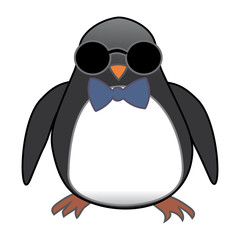penguin in sunglasses