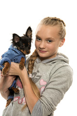 Portrait of the girl and Toy Terrier