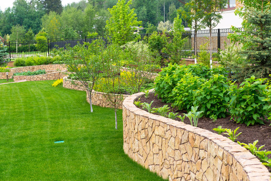 Landscape design in home garden, landscaping in backyard or yard of residential house