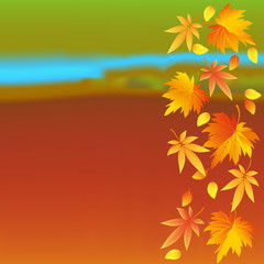 Autumn colorful wallpaper with leaves