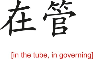 Chinese Sign for in the tube, in governing