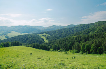 Zelfklevend Fotobehang Groen blauw Beautiful summer alpine landscape with green wooded mountains