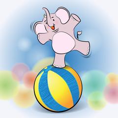 cute elephant play on Ball