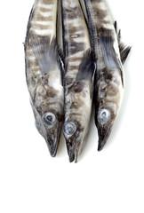 Three raw ice fishes on white background .