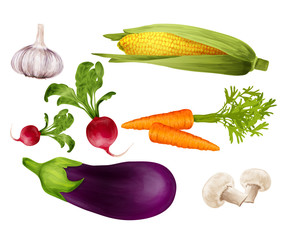 Vegetables realistic set