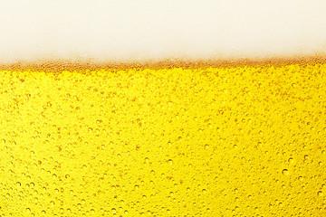ビールのクローズアップ