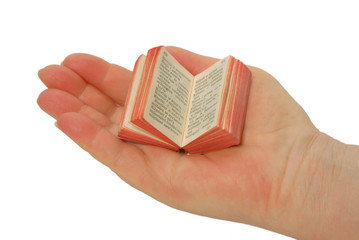 Miniature book on the palm