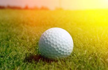 Golfball in grass