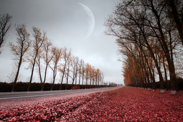 moon over the road