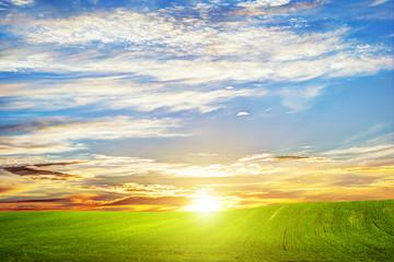 Green grass landscape at sunset. Romantic clouds