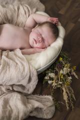 Newborn Baby schlafend in einer Schale