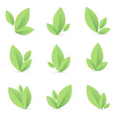 Set of simple green leaf, isolated, vector illustration