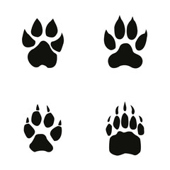 lion, tiger, wolf, bear footprint