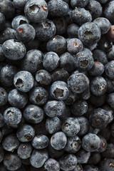 Fresh Organic Raw Blueberries