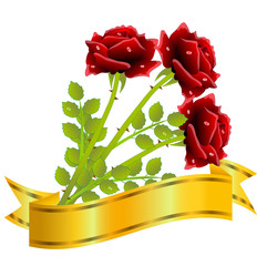 three red roses and gold ribbon  on a white background
