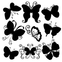 Vector Set of Butterflies. Stencils Isolated on White Background