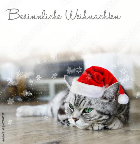 Besinnliche Bilder Weihnachten.Besinnliche Weihnachten Stockfotos Und Lizenzfreie Bilder Auf