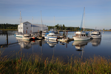 Nicomekl River Marina Morning