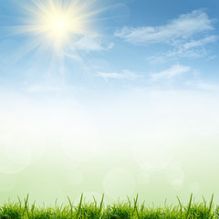 green nature background at summer