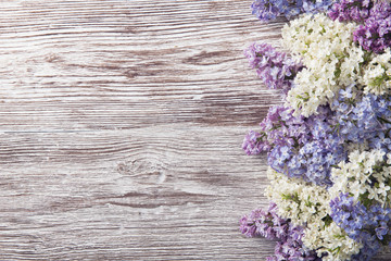 Foto auf Leinwand Flieder lilac flowers on wood background, blossom branch on vintage wood