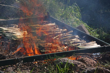 barbecue onions