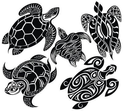 Set of turtles
