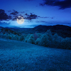 green grass on hillside meadow in mountain at night