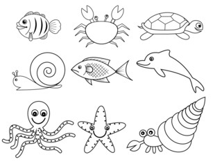 sea and shell animals