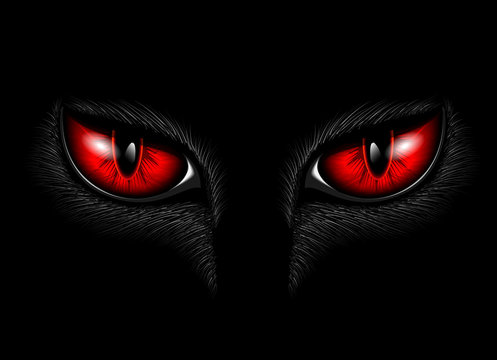red cat's eyes