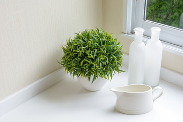home interior decoration: a jug with bottle and decorative plant
