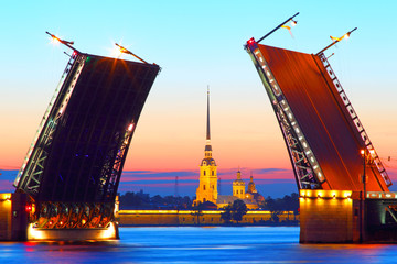 Night St. Petersburg. Russia.
