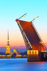 Night St. Petersburg. Russia.