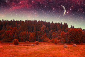 Printed kitchen splashbacks Brown autumn night infrared photography. Elements of this image furnis