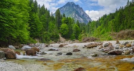 Fototapeta Górski strumień u podnóża alp Włoskich obraz