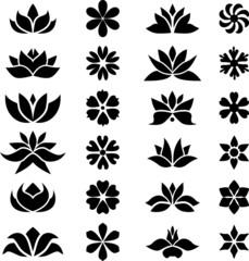 Flower set III