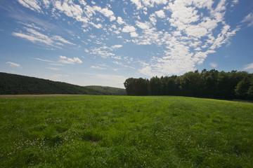 Felder und Wälder im Sommer