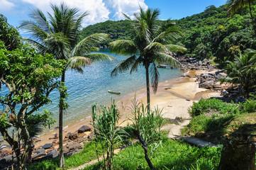 Wild Beach at Ilha Grande