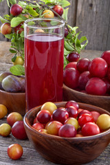 juice from sloes and domestic organically grown plums
