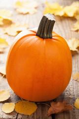 pumpkin on wooden background
