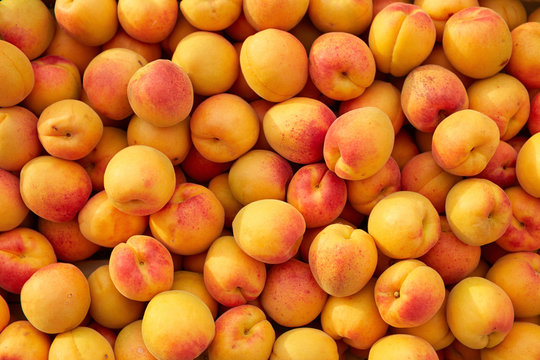 Background of fresh apricots