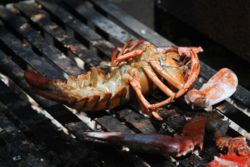 Lobster grillen
