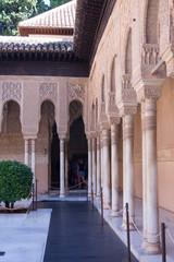 Types of Alhambra