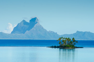 Island with palm trees in the South Pacific
