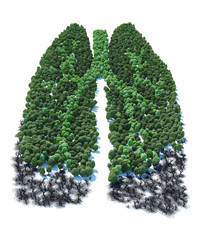 Tree with form of human lung patients ver 1