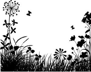 Meadow plants III